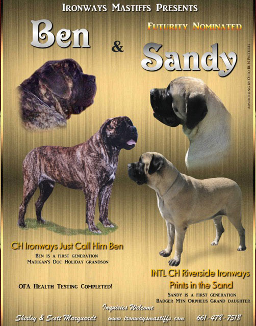 Ben and Sandy